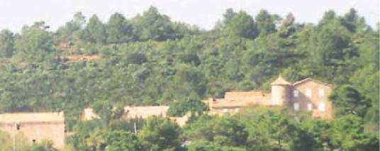 Domaines viticoles Pradines d'Amont